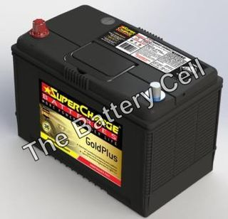MF95D31R SuperCharge GOLD Battery (N70Z, N70ZZ)