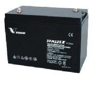 VFMR225 6 volt 225amp Cycling Battery