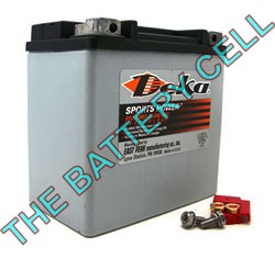 ETX14L 12a/h 220/410cca Dry Cell BIG ENGINE Motorcycle battery
